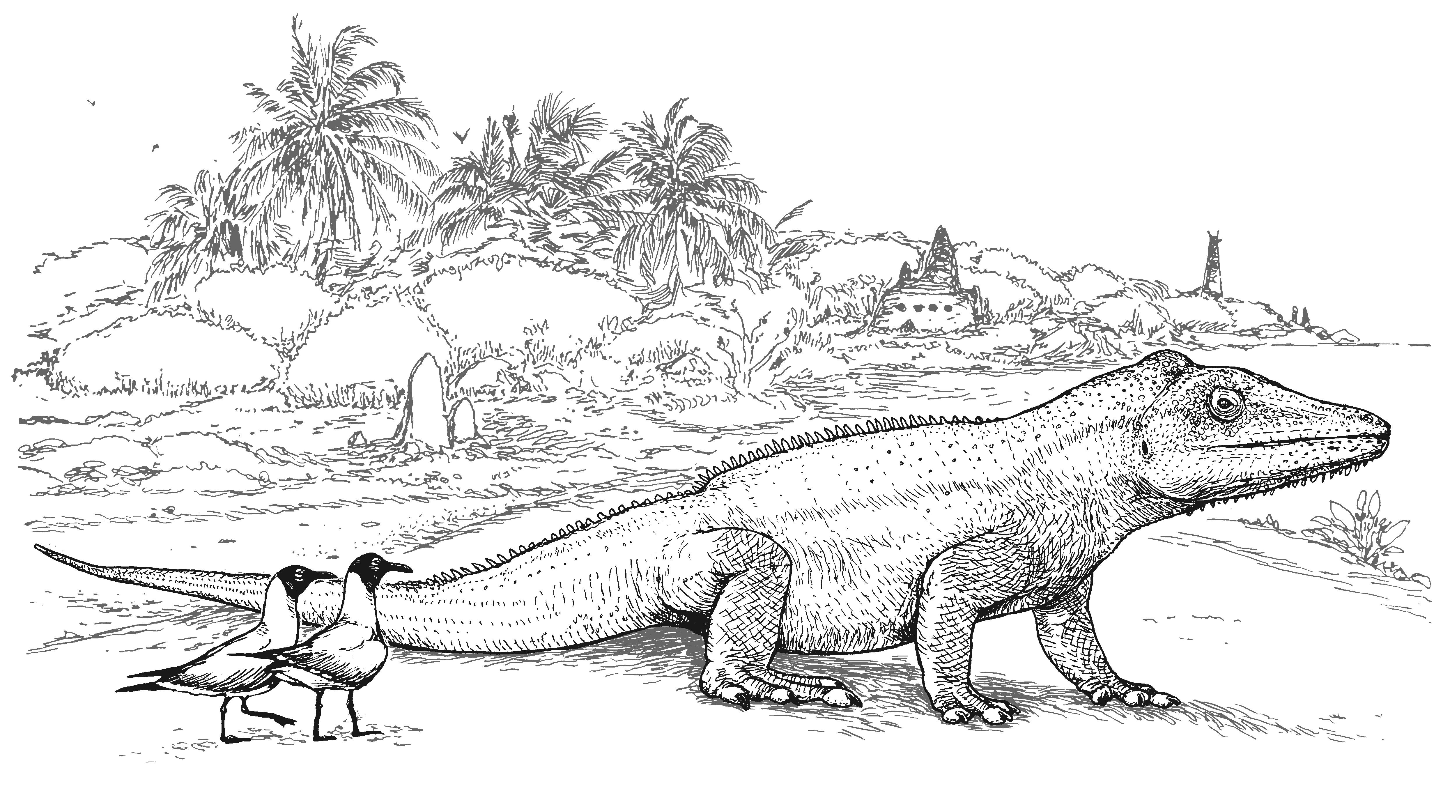 C M Kosemen Illustration